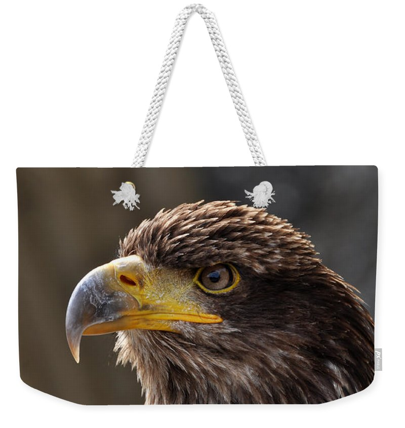 Eagle Weekender Tote Bag featuring the photograph Proud Look by Simona Ghidini