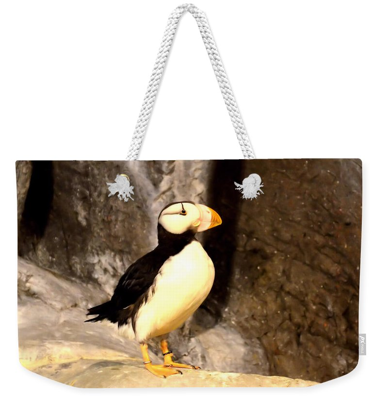 Proud Puffin Weekender Tote Bag featuring the photograph Proud Puffin by Luther Fine Art