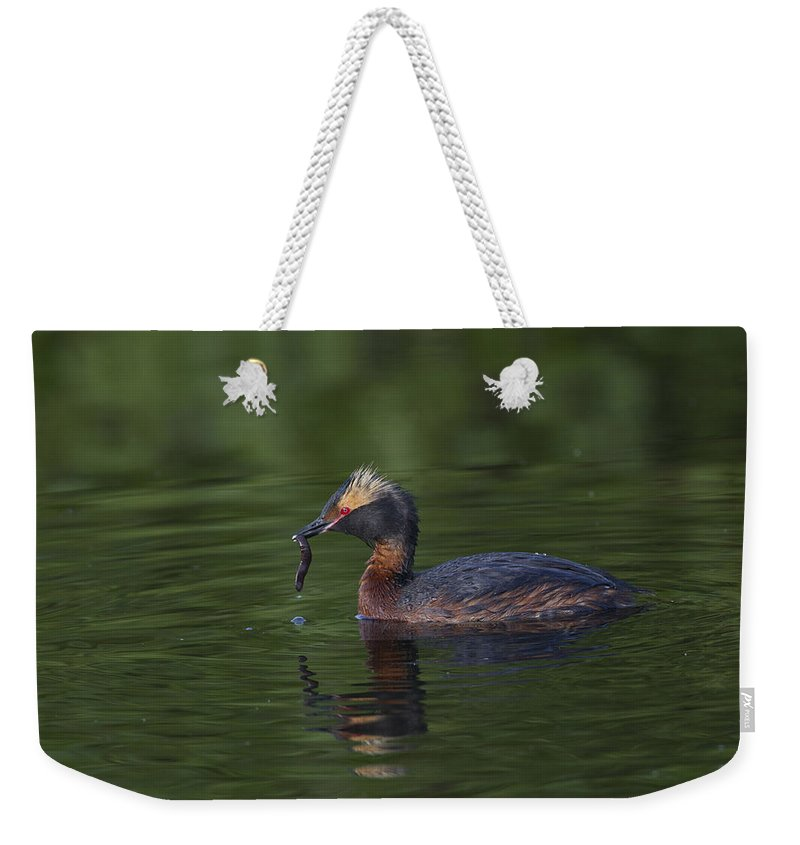 Doug Lloyd Weekender Tote Bag featuring the photograph Provider by Doug Lloyd