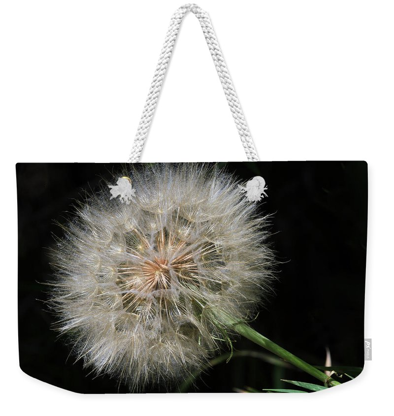 Dandelion Weekender Tote Bag featuring the photograph Puff And Your Gone by Donna Kennedy