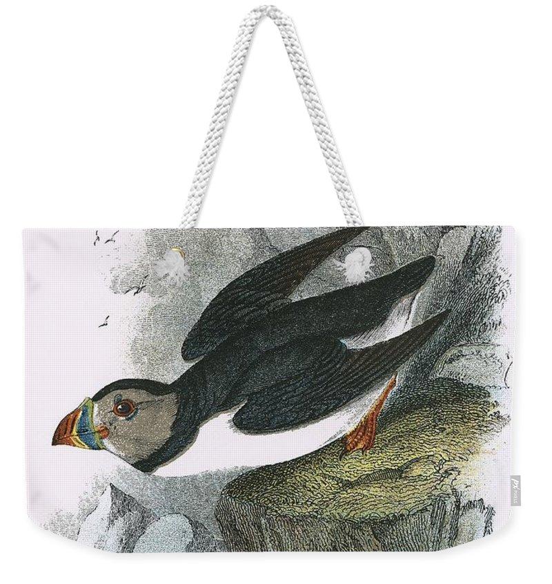 Puffin Weekender Tote Bags
