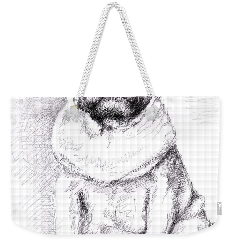 Dog Weekender Tote Bag featuring the drawing Pug Anton by Nicole Zeug