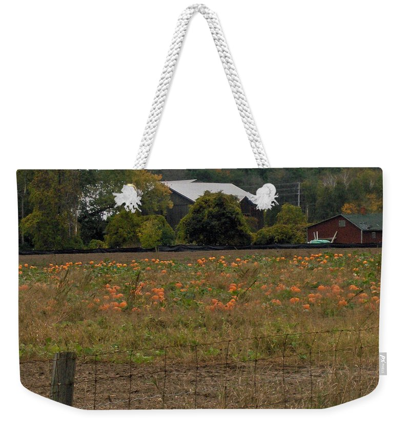Pumpkin Weekender Tote Bag featuring the photograph Pumpkin Patch by Brenda Brown