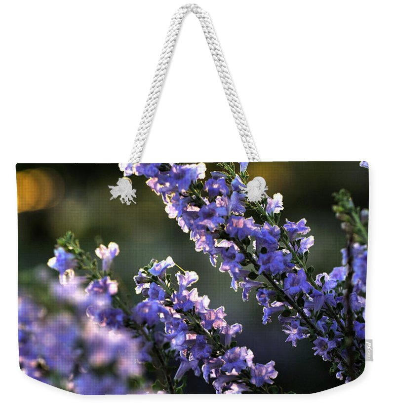 Seasons Weekender Tote Bag featuring the photograph Purple 29987 by Jerry Sodorff
