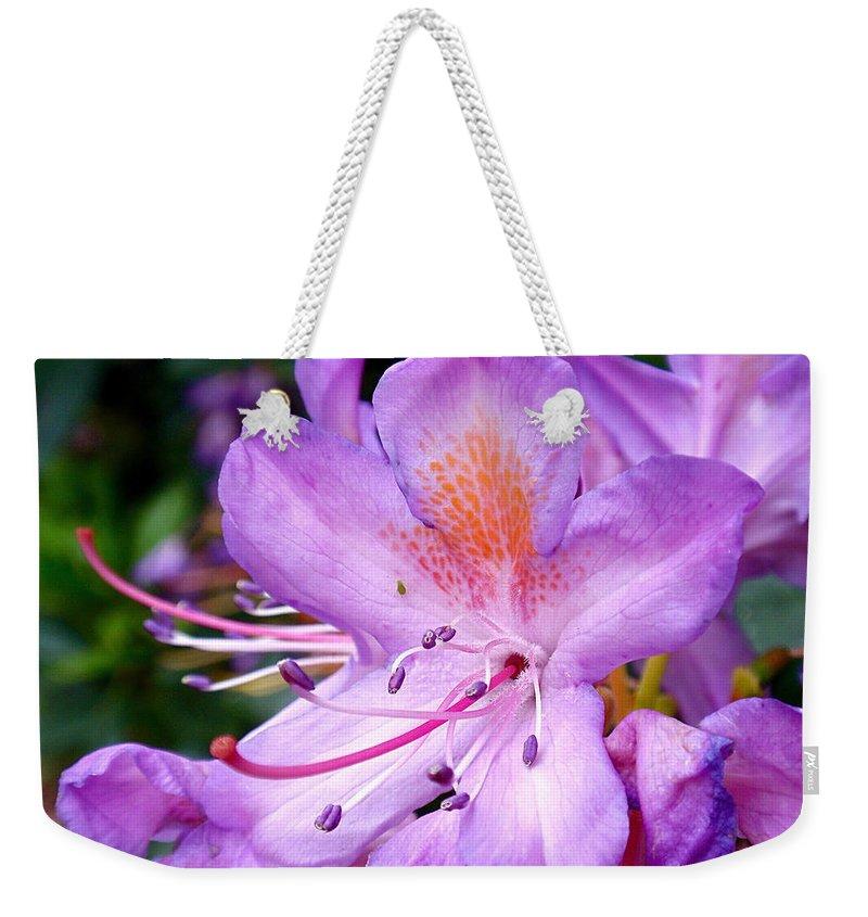 Azaleas Weekender Tote Bag featuring the photograph Purple Azalea by Rona Black