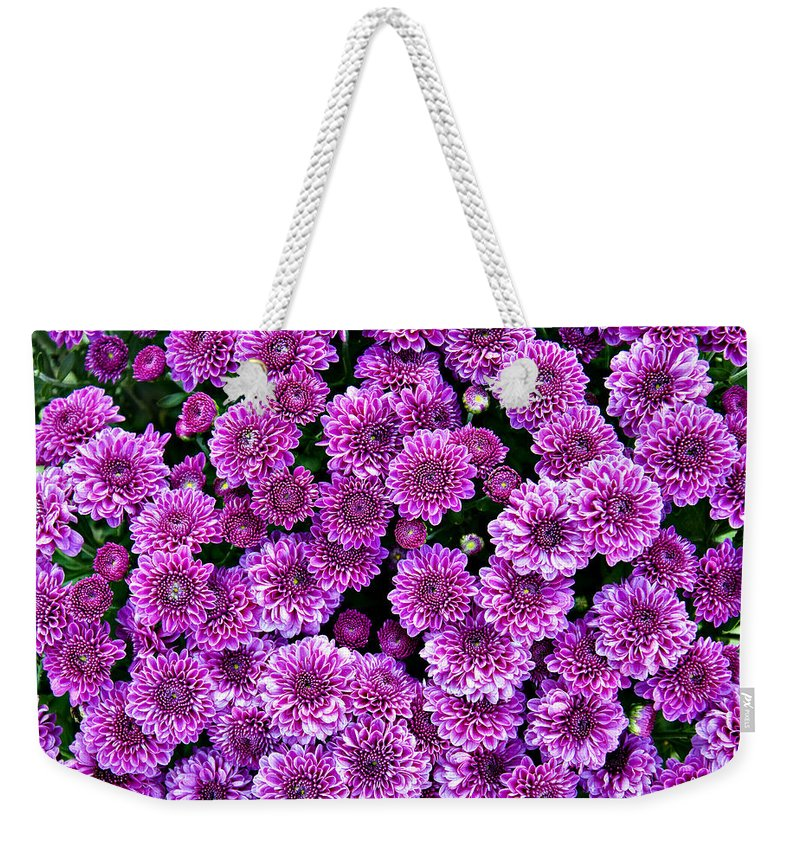 Background Weekender Tote Bag featuring the photograph Purple Blanket by Ricky Barnard