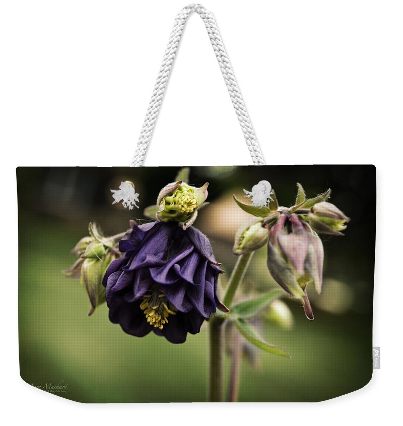 Purple Columbine Weekender Tote Bag featuring the photograph Purple Columbine by Mary Machare