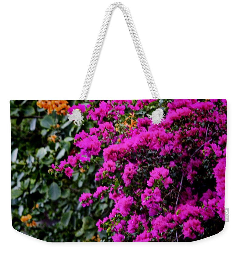 Colors Weekender Tote Bag featuring the photograph Purple Contrast by Douglas Barnard