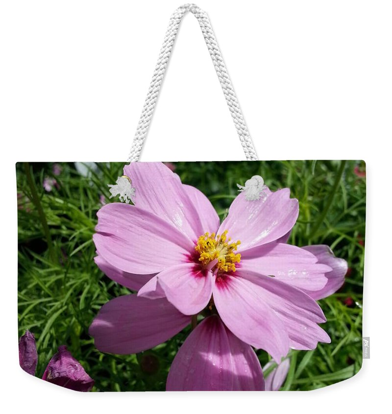 Purple Weekender Tote Bag featuring the photograph Purple Cosmos by Caryl J Bohn