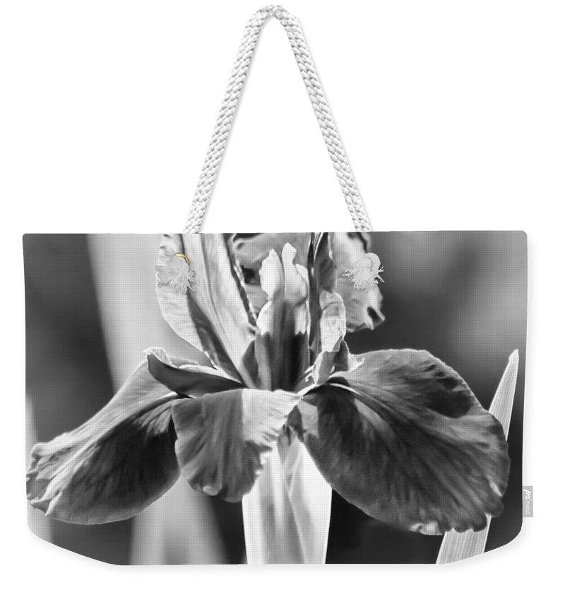 Iris Weekender Tote Bag featuring the photograph Purple Fairytale - Bw by Carolyn Marshall