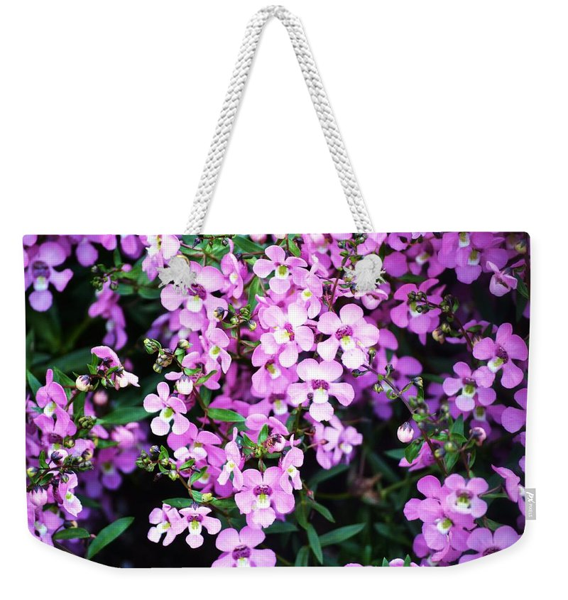Purple Weekender Tote Bag featuring the photograph Purple Flora by Tara Potts