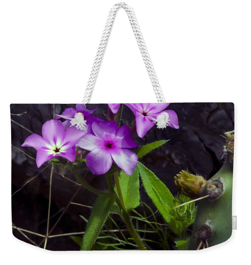 Texas Weekender Tote Bag featuring the photograph Purple Flower At Enchanted Rock by Greg Reed