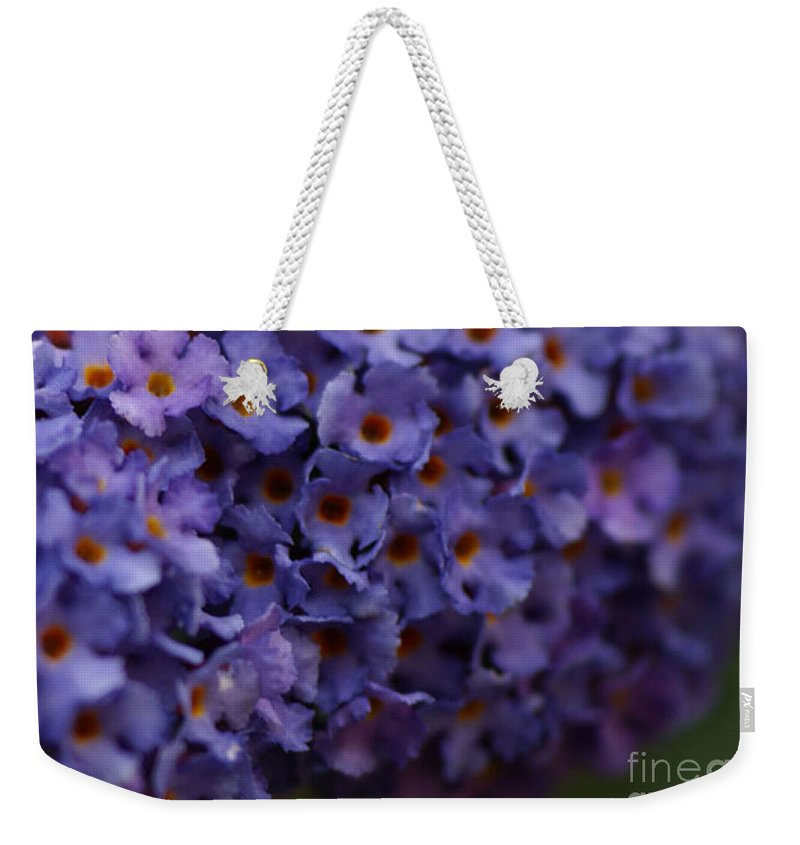 Purple Weekender Tote Bag featuring the photograph Purple Flowers 2 by Carol Lynch
