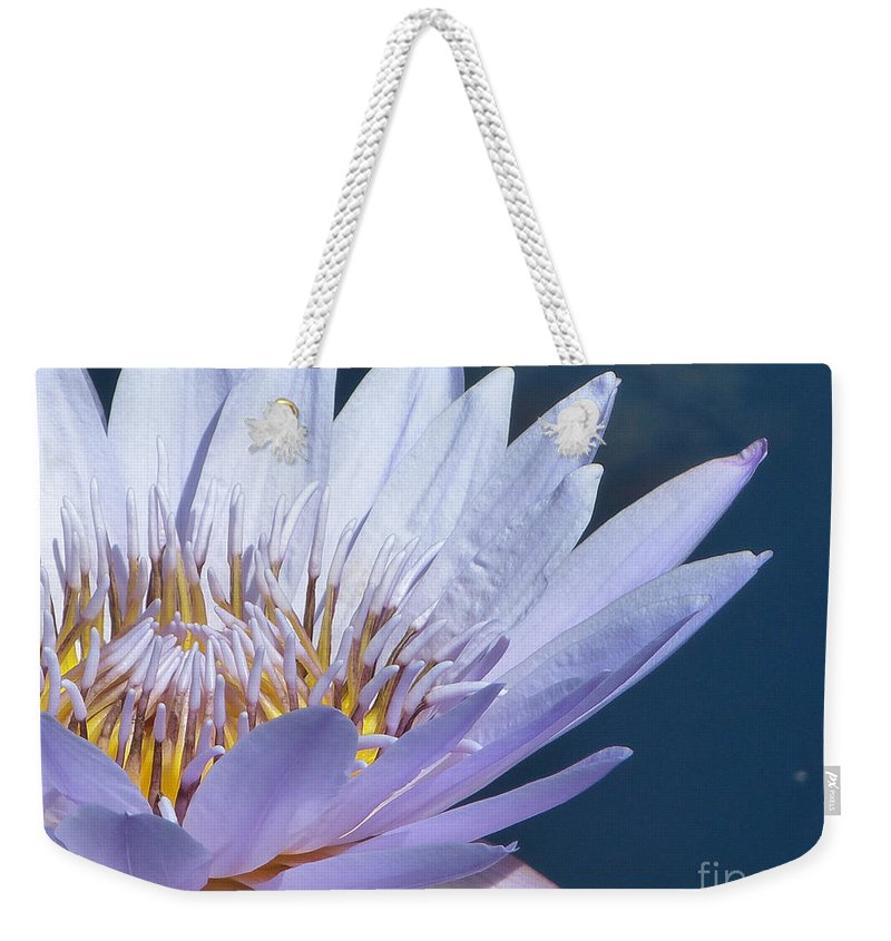 Flower Weekender Tote Bag featuring the photograph Purple Glory II by Marguerita Tan