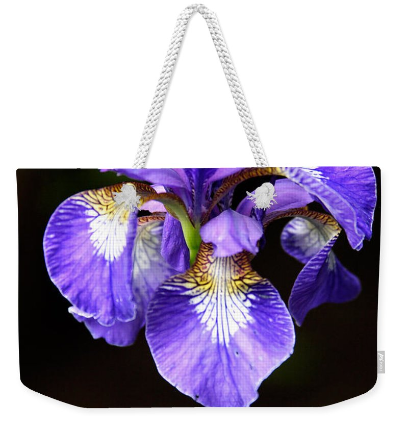 3scape Weekender Tote Bag featuring the photograph Purple Iris by Adam Romanowicz