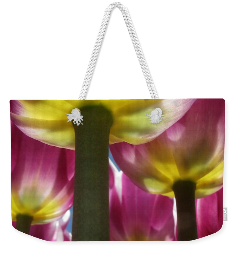 Tulip Weekender Tote Bag featuring the photograph Purple Lights by Lisa Foster