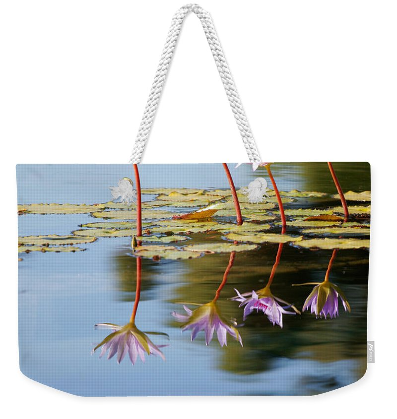 Lillies Weekender Tote Bag featuring the photograph Purple Lillies by Peter Tellone