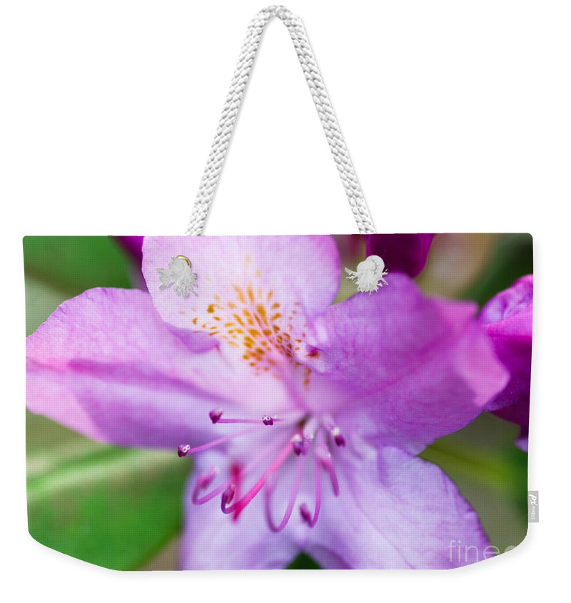Purple Flower Weekender Tote Bag featuring the photograph Purple Long Pistil Flower by Optical Playground By MP Ray