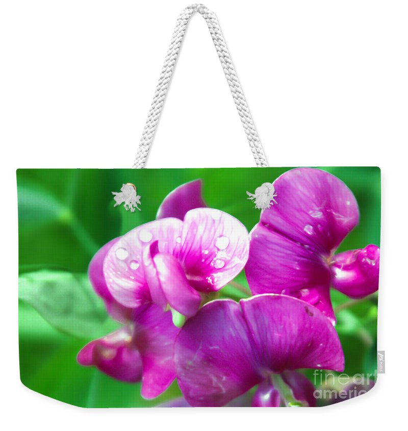 Purple Pansy Weekender Tote Bag featuring the photograph Purple Pansies by Optical Playground By MP Ray