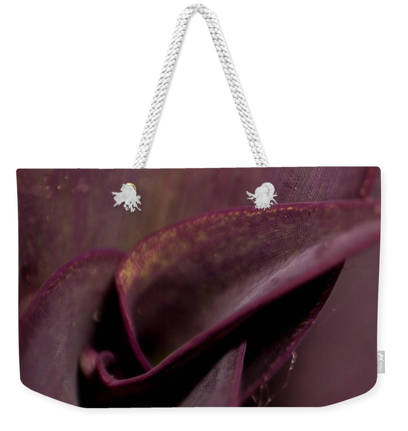 Purple Weekender Tote Bag featuring the photograph Purple Plant Macro by Jon Cody