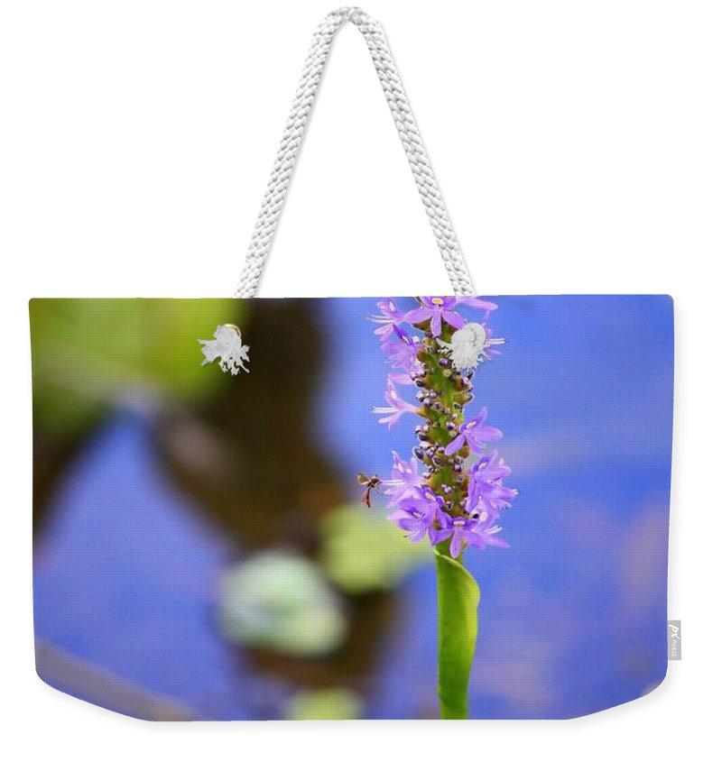 Pickerelweed Weekender Tote Bag featuring the photograph Purple Swamp Flower by Carol Groenen