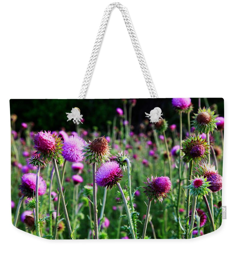 Landscape Weekender Tote Bag featuring the photograph Purple Thistle by Toni Hopper