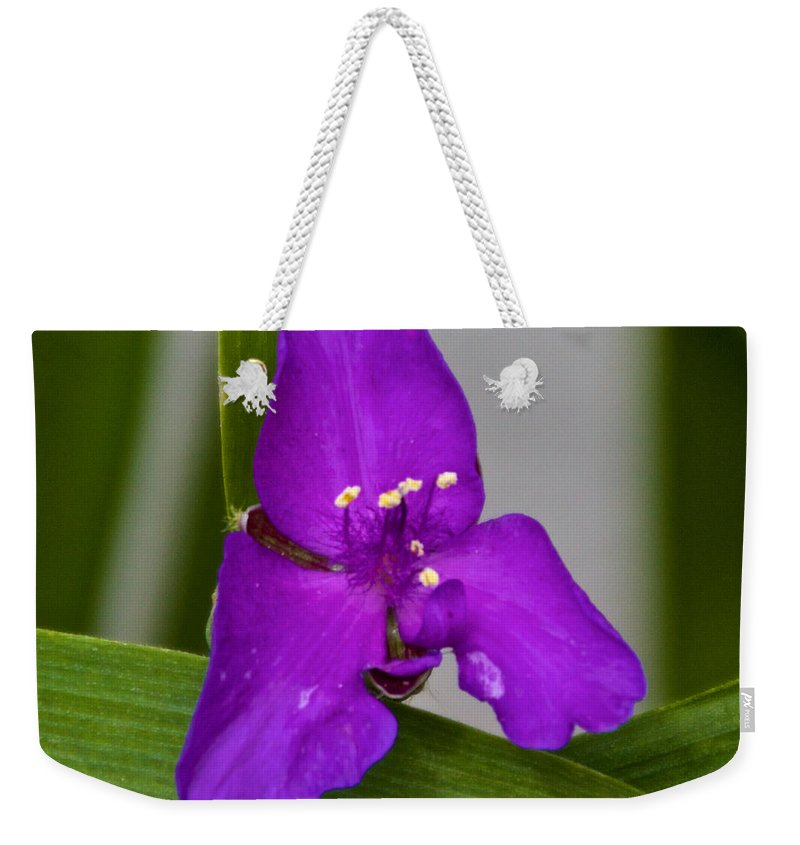 Purple Weekender Tote Bag featuring the photograph Purple Triangle by William Norton