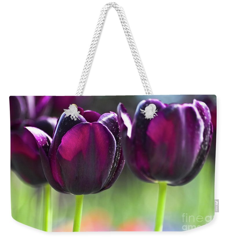 Tulip Weekender Tote Bag featuring the photograph Purple Tulips by Heiko Koehrer-Wagner