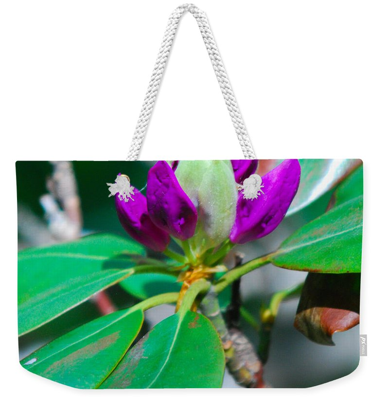 Purple Flower Weekender Tote Bag featuring the photograph Purple Turtle Head Flower by Optical Playground By MP Ray