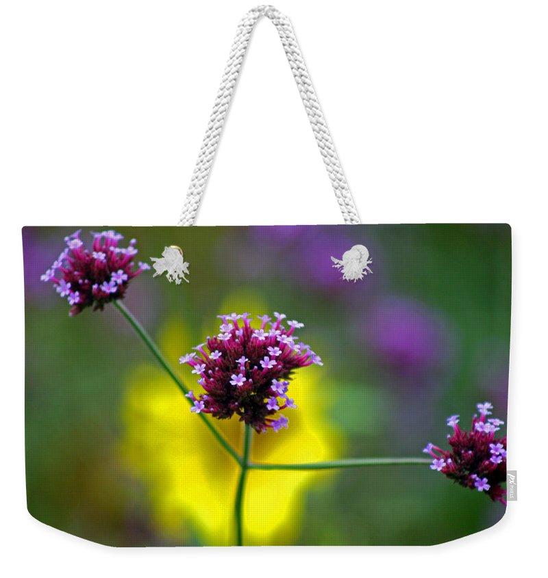 Purple Weekender Tote Bag featuring the photograph Purple Verbena Flowers by Karen Adams