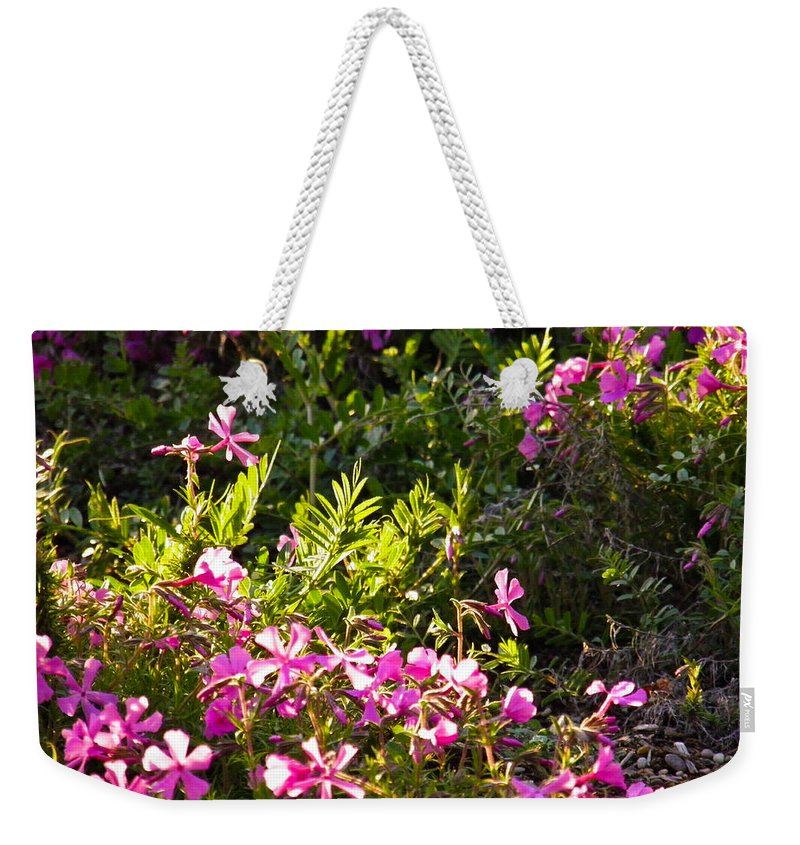 Creeping Weekender Tote Bag featuring the photograph Purple Wonderland by Nick Kirby