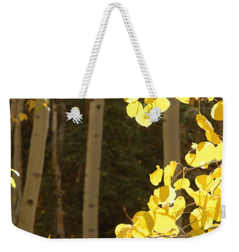 Aspen Weekender Tote Bag featuring the photograph Quakies In The San Juans by Jerry McElroy