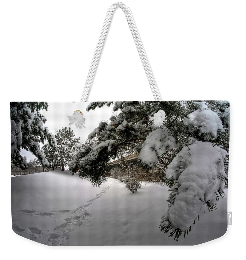Buffalo Weekender Tote Bag featuring the photograph Queen City Winter Wonderland After The Storm Series 0029 by Michael Frank Jr
