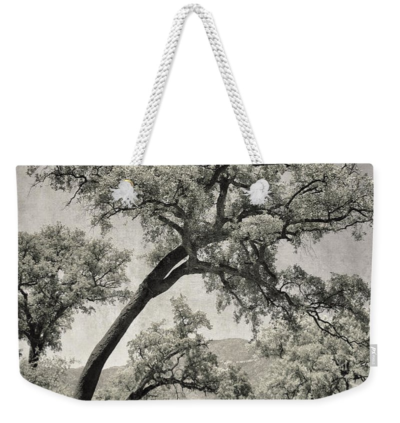 Quercus Suber Weekender Tote Bag featuring the photograph Quercus Suber Retro by Guido Montanes Castillo