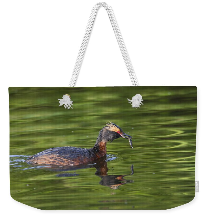 Doug Lloyd Weekender Tote Bag featuring the photograph Quick Lunch by Doug Lloyd