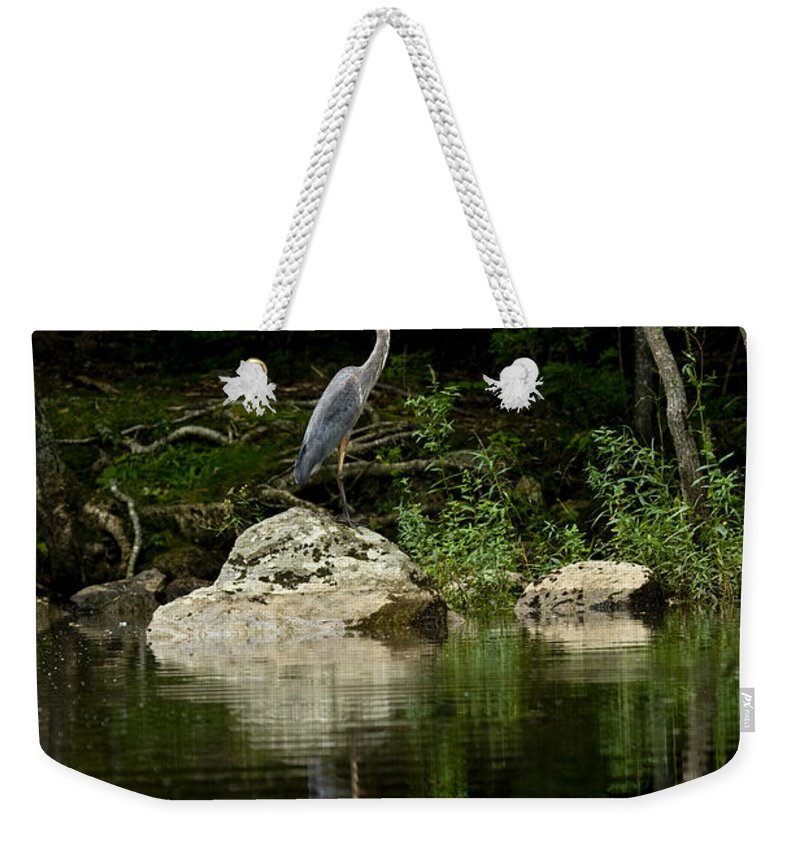Blue Heron Weekender Tote Bag featuring the photograph Quiet Waters by Brent L Ander