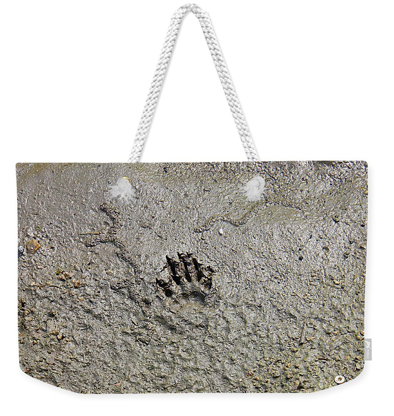 Fotprint Weekender Tote Bag featuring the photograph Raccoon Print by Nick Kirby