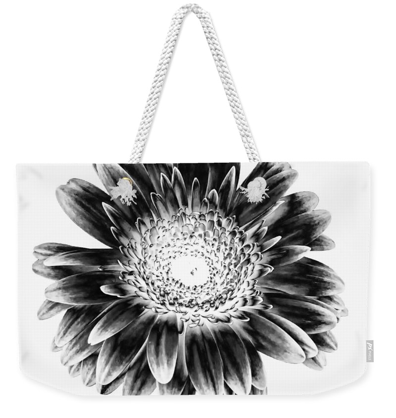 Gerber Weekender Tote Bag featuring the photograph Radiant Solarized by Steve Harrington