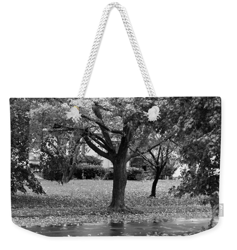 Macro Weekender Tote Bag featuring the photograph Rain And Leaf Ave In Black And White by Rob Hans