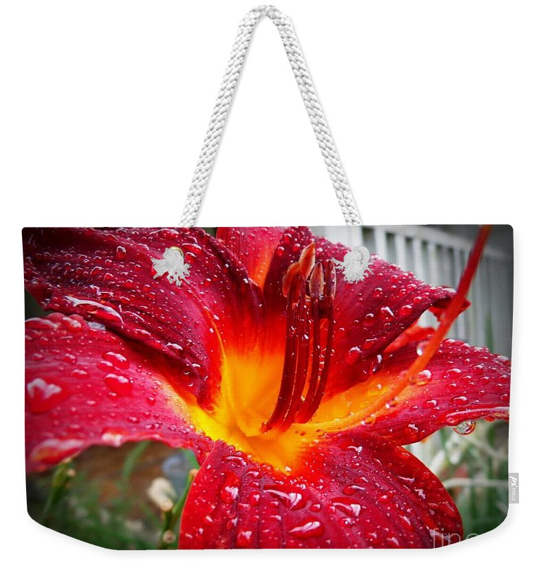 Lilly Weekender Tote Bag featuring the photograph Rain Kissed Lilly Profile 1 by Jannice Walker