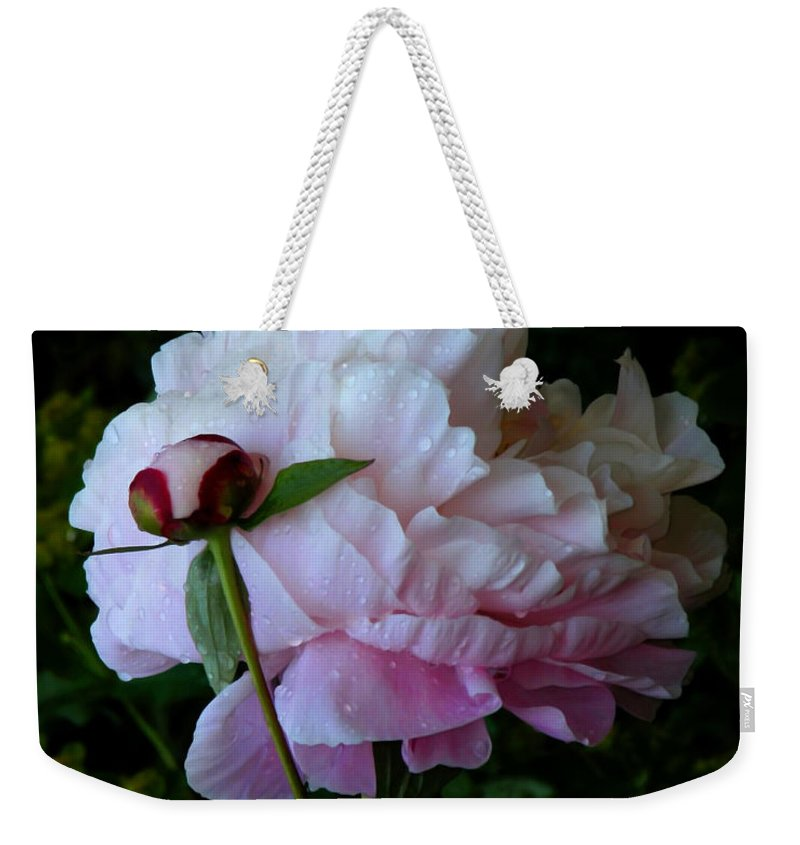 Peony Weekender Tote Bag featuring the photograph Rain-soaked Peonies by Rona Black