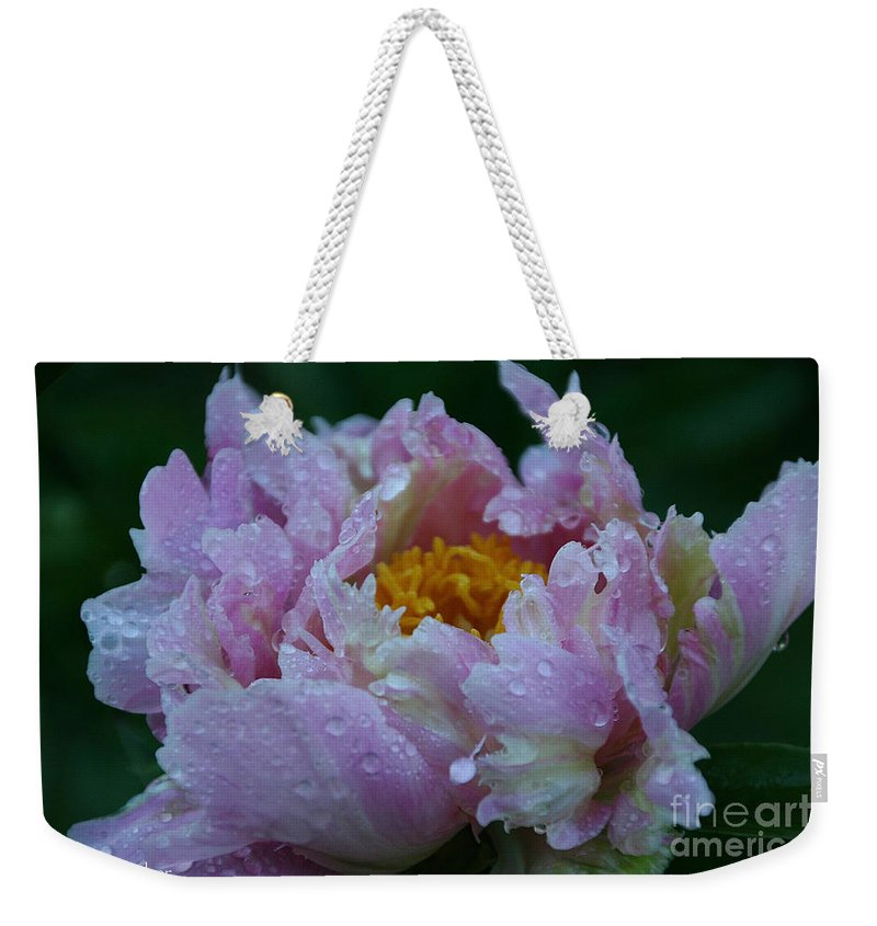 Flower Weekender Tote Bag featuring the photograph Rain Tossed by Susan Herber