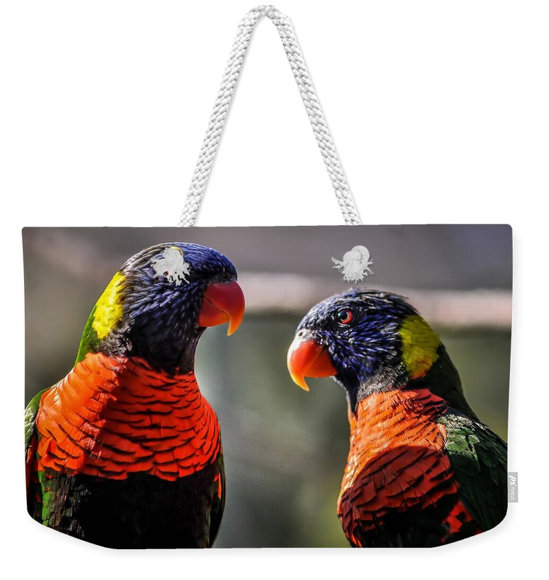 Animal Weekender Tote Bag featuring the photograph Rainbow Parrot by Alex Grichenko