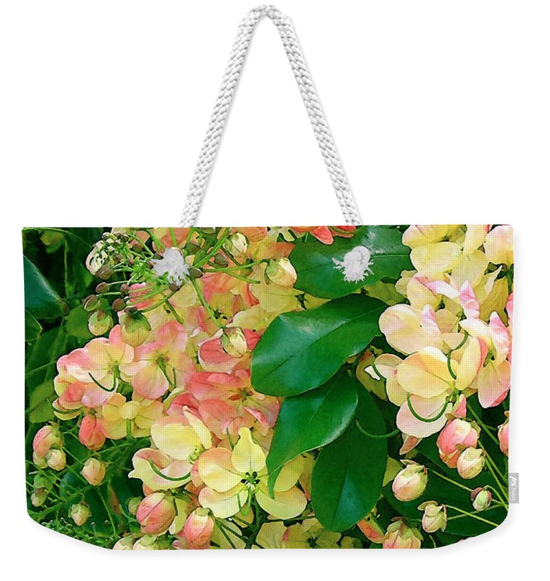 Rainbow Shower Tree Weekender Tote Bag featuring the photograph Rainbow Shower Tree by James Temple