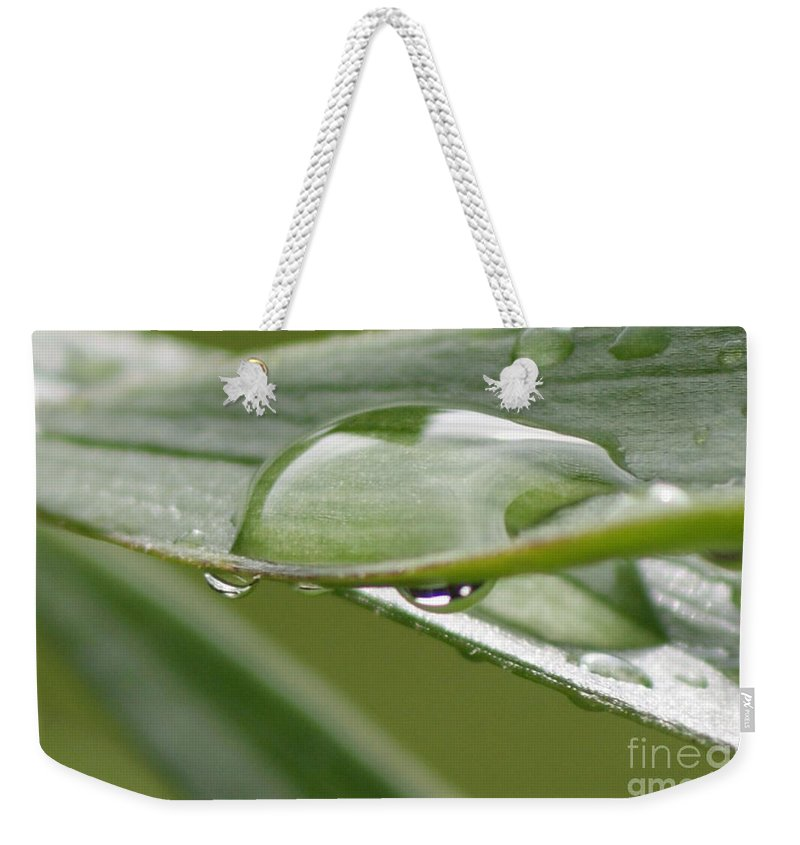 Raindrop Weekender Tote Bag featuring the photograph Raindrops by Carol Lynch