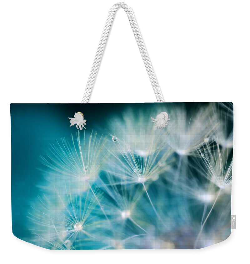 Raindrops Weekender Tote Bag featuring the photograph Raindrops On Dandelion Sea Blue by Marianna Mills