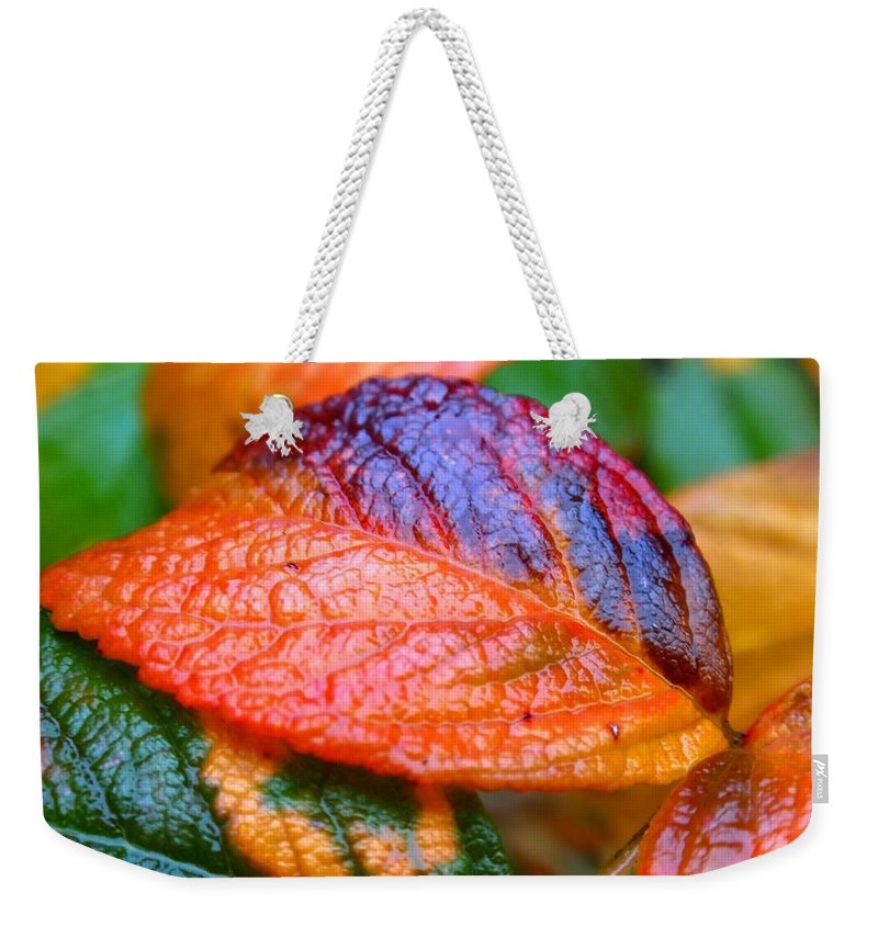 Leaf Weekender Tote Bag featuring the photograph Rainy Day Leaves by Rona Black