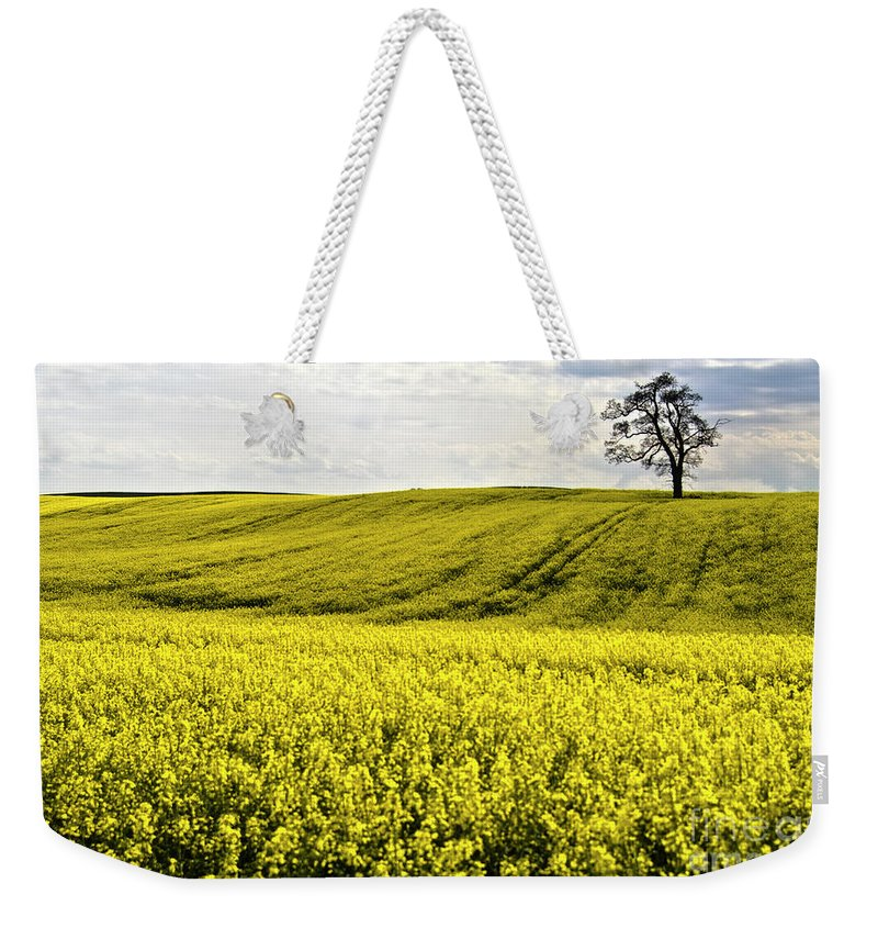 Heiko Weekender Tote Bag featuring the photograph Rape Landscape With Lonely Tree by Heiko Koehrer-Wagner