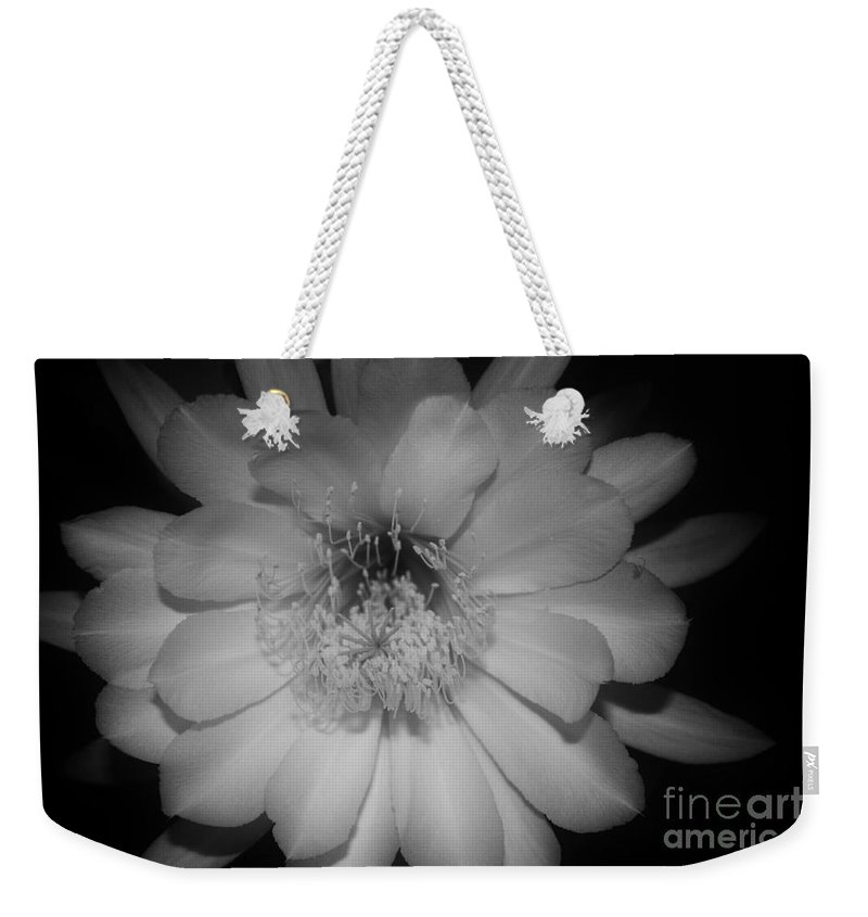 Keri West Weekender Tote Bag featuring the photograph Rapsody by Keri West