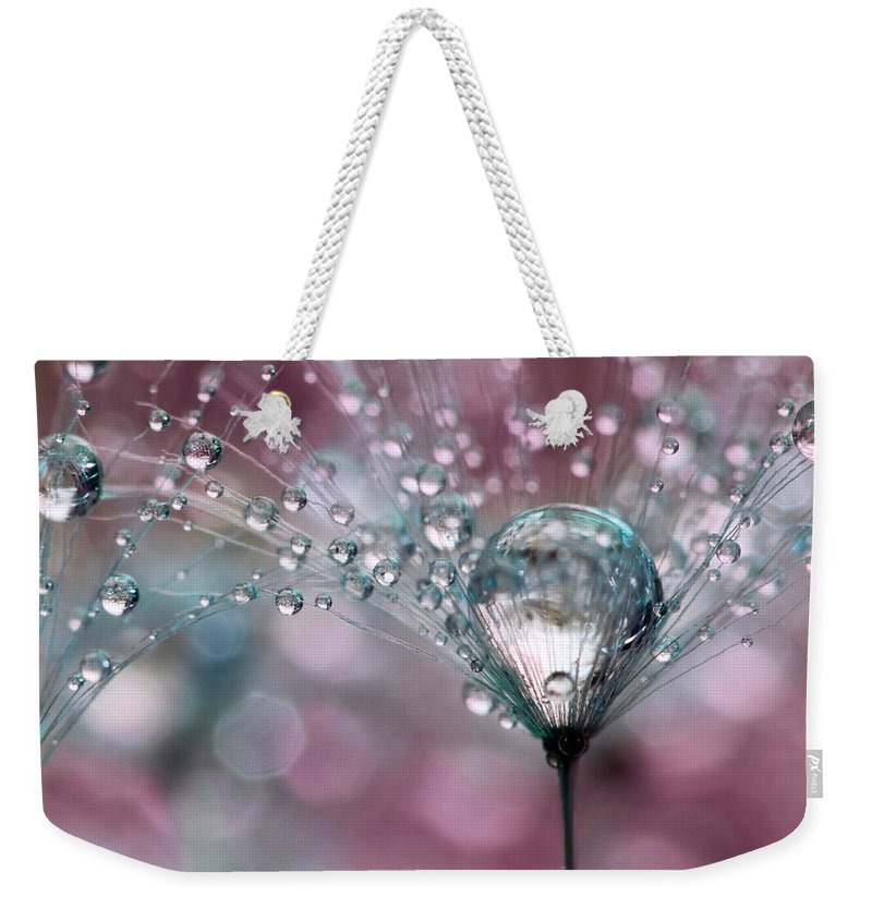 Dandelion Weekender Tote Bag featuring the photograph Rasberry Sparkles by Sharon Johnstone